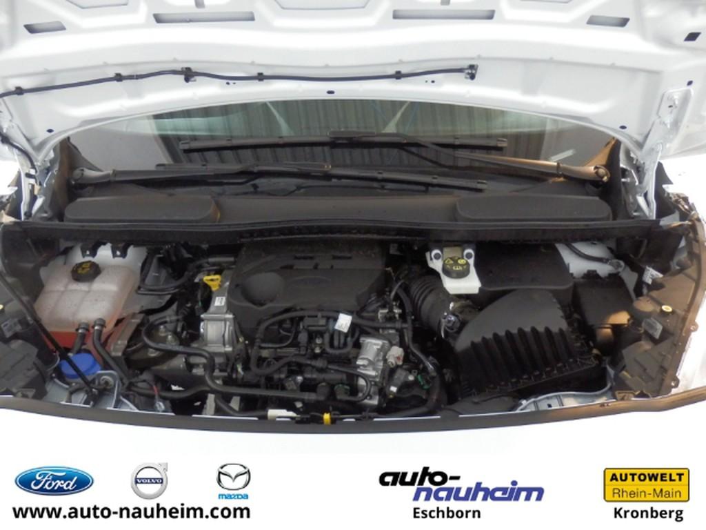 Ford Transit Connect 1.0 Kasten EcoBoost EU6d-T Multif Lenkrad