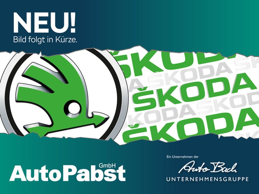 Skoda Fabia 1.0 MPI Cool Plus Spieg beheizbar