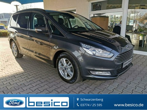 Ford Galaxy Business Winter Paket