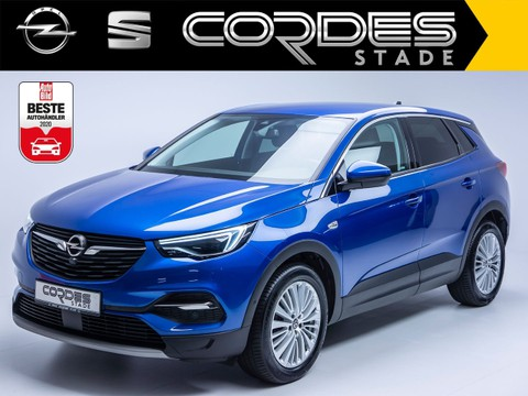 Opel Grandland X 1.2 Dynamic Turbo (87)