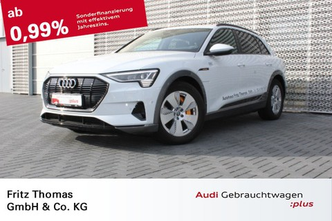 Audi e-tron 0.1 55 quattro ehem UPE 1020