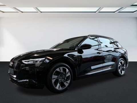 Audi e-tron advanced 55 quattro 300