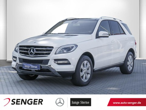 Mercedes ML 250 Spur-Paket