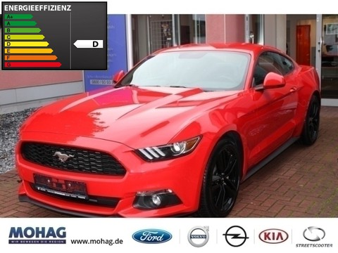 Ford Mustang 2.3 Basis EcoBoost
