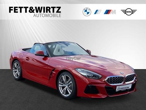 BMW Z4 sDrive20i SAG M-Sport HiFi 18