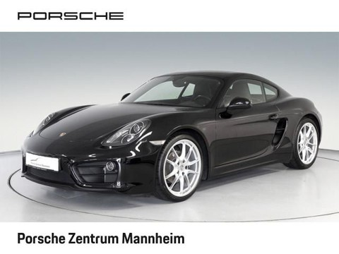 Porsche Cayman Sportabg