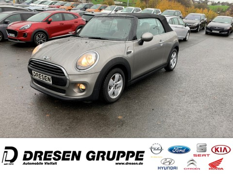 MINI One Cabrio Ledersitze h