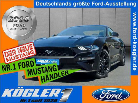 Ford Mustang 2.3 (2018) Fastback dt Modell